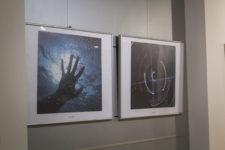 Výstava žáků Nafoceno
